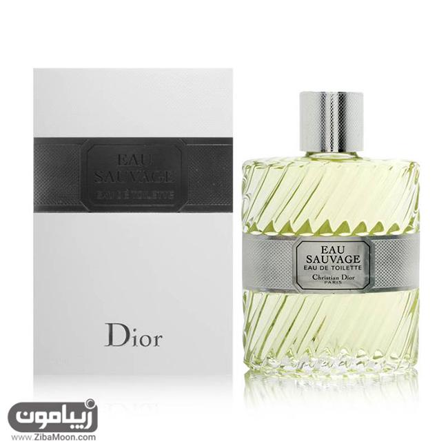 پنج عطر برتر دیور برای آقایان (Dior 2017)
