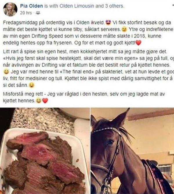 عکس پخت گوشت اسب (1)