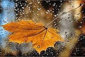 باران در پاییز