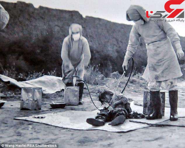 اردوگاه ژاپن