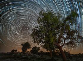 ستاره های زیبا