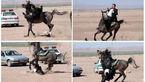 اسب به نماینده مجلس شورای اسلامی سواری نداد و او را زمین کوبید! + عکس