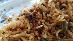 پشت پرده عکس جنجالی عقرب داخل غذای دانشجوها + تصویر