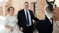 سورپرایزی که عروس جوان را به شدت ناراحت کرد + عکس