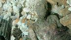 آخرین خبر شگفت انگیز درباره جسد مومیایی شهر ری