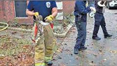 نجات 100 مار از جزغاله شدن توسط آتش نشانان+ عکس