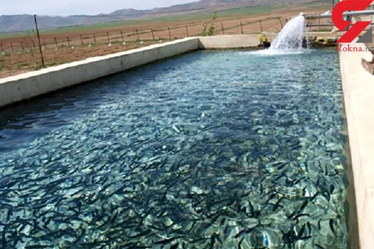 برخورد جدی با واحدهای غیرمجاز پرورش ماهی