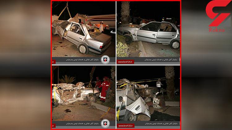 درخت نخل قاتل 2 نفر در بندرعباس شد+ عکس