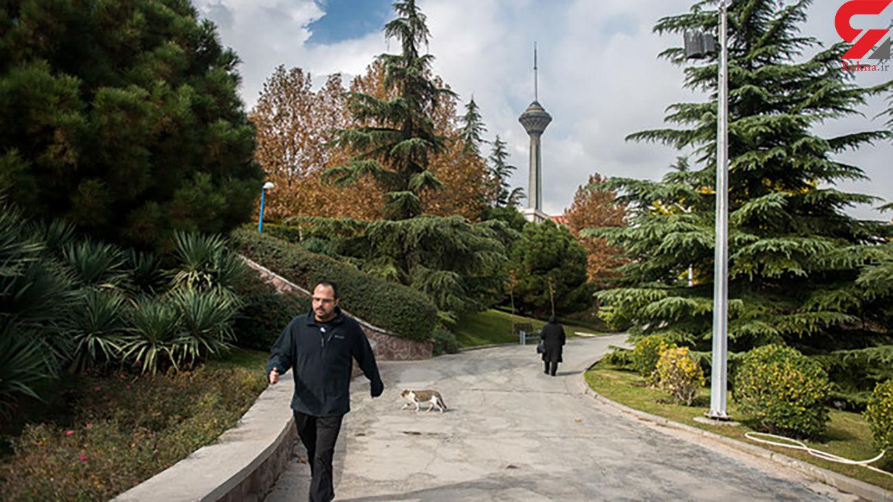کیفیت هوای تهران در محدوده قابل قبول است