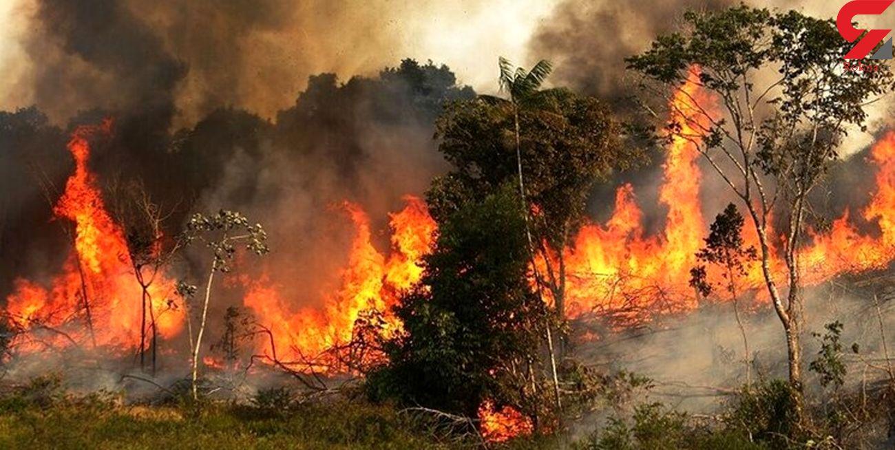 آتش سوزی در ارتفاعات کوه پهن گچساران