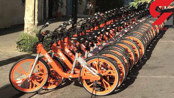 جریمه برای استفاده از تلفن همراه هنگام دوچرخهسواری در هلند