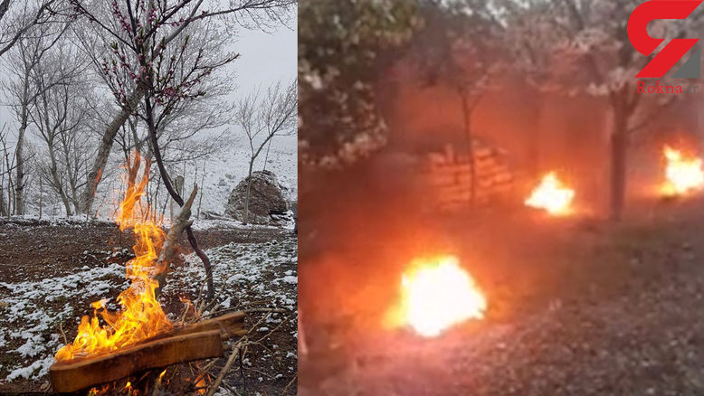 کاهش دمای هوا و نگرانی باغداران استان اردبیل + فیلم و عکس