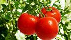 6 خوراکی برای تعادل فشار خون