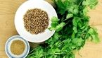 درمان کم خونی با این گیاه خوشمزه/از خواص درمانی گزنه غافل نشوید