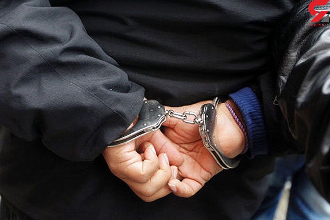 دستگیری سارق باغ ویلاها در سبزوار