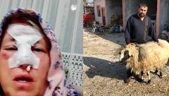مرد کینه ای انتقام مادرش را از قوچ خشمگین گرفت +عکس