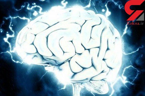 اندازه مغز با قد و هوش مرتبط است