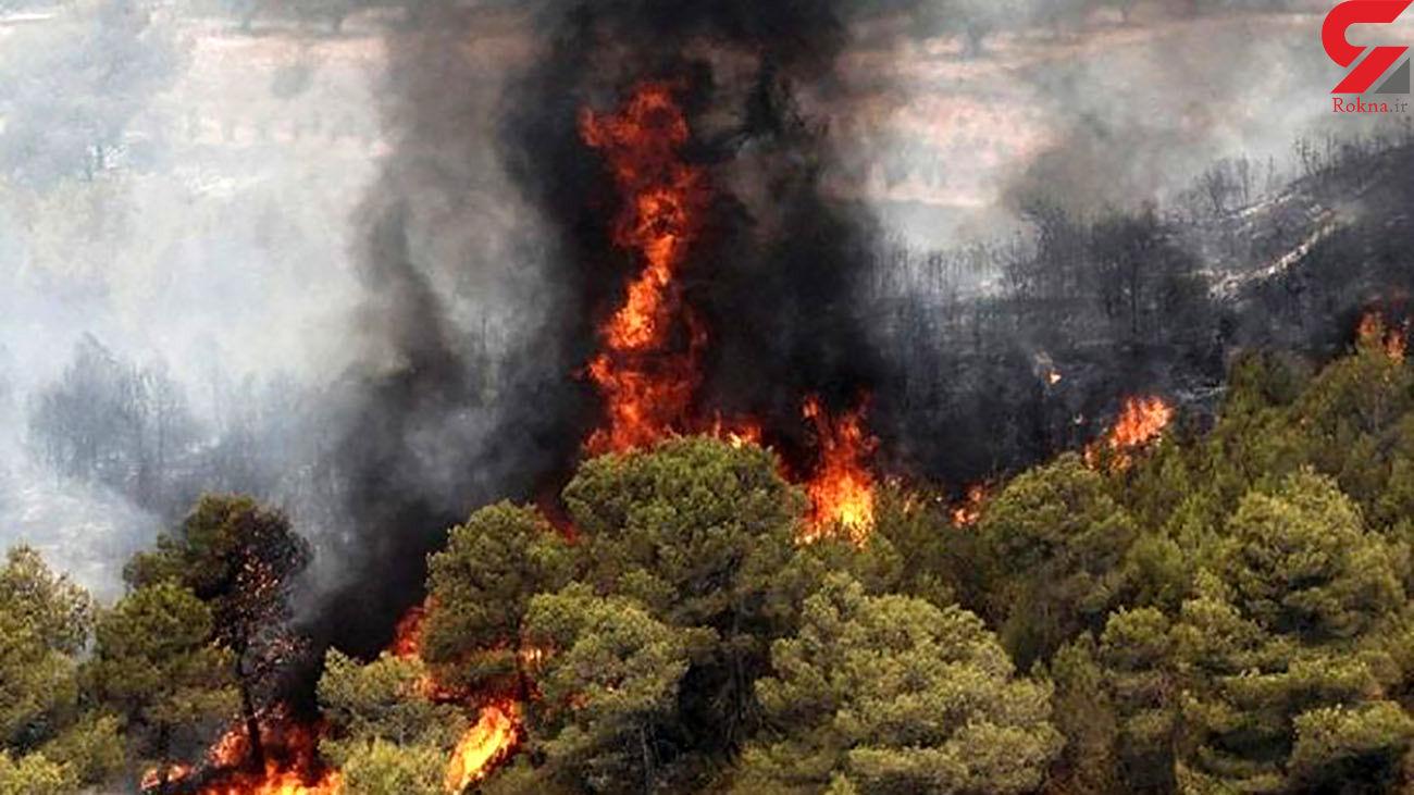 آتشسوزی در مراتع روستای قارلوق ابهر