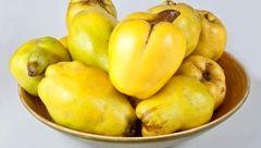 تناسب اندام با میوه ای خوشبو
