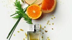 تفاوت عطر ادوپرفیوم با ادوتویلت و ادکلن/ماندگاری عطر روی کدام پوست بیشتر است؟