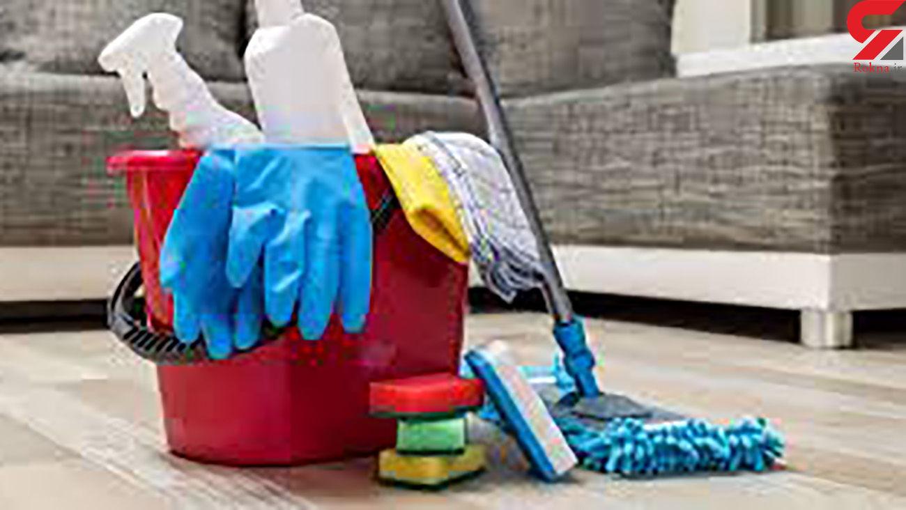 با مواد طبیعی خانه تکانی کنید
