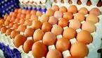آنفولانزای پرندگان باعث توقف صادرات تخم مرغ شد