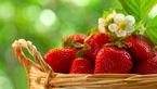 با خوردن این میوه شاد و جوان بمانید