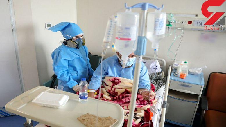الکل مرگ 41 تربت جامی را روانه بیمارستان کرد