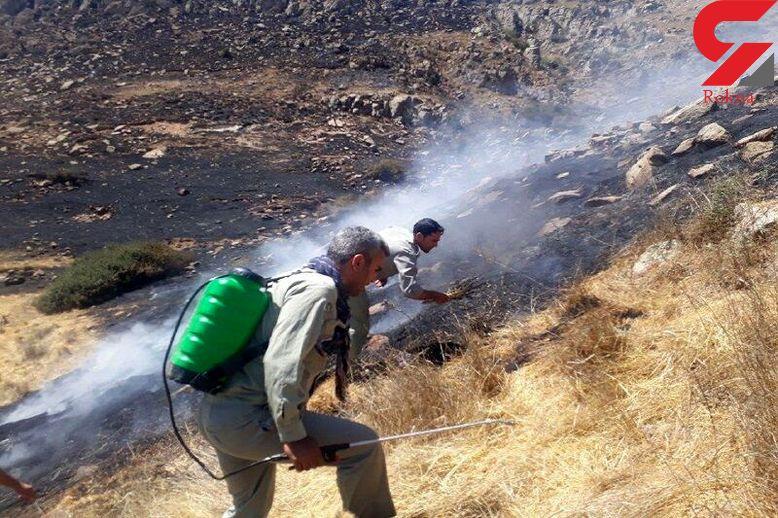 3 هکتار از اراضی ملی قزوین در آتش سوخت