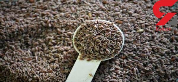 درمان سوزش سردل با ماده ای گیاهی