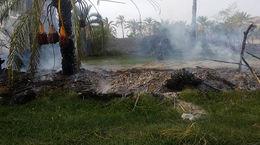 فیلم آتش سوزی وحشت آور نخلستان های 3 روستا در آبادان