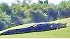 تمساح 5 متری در زمین گلف