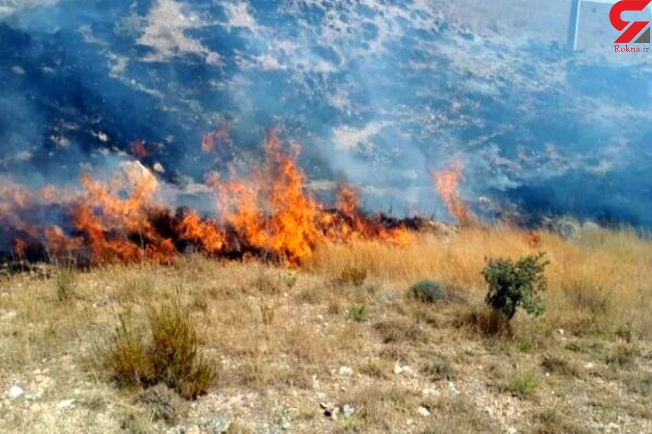 یک هکتار از اراضی «هرانده» فیروزکوه در آتش سوخت
