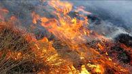 طبیعت سقز در آتش سوزی سوخت