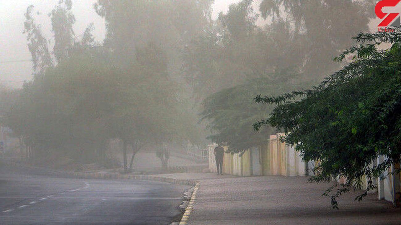 وزش تندباد عصر امروز در تهران چند مصدوم داشت؟ / سخنگوی آتش نشانی اعلام کرد