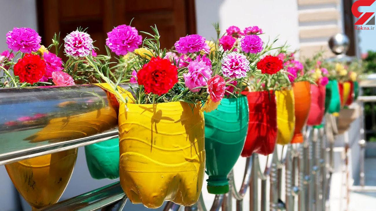 گلدان با بطریهای پلاستیکی چگونه می سازند؟ + فیلم