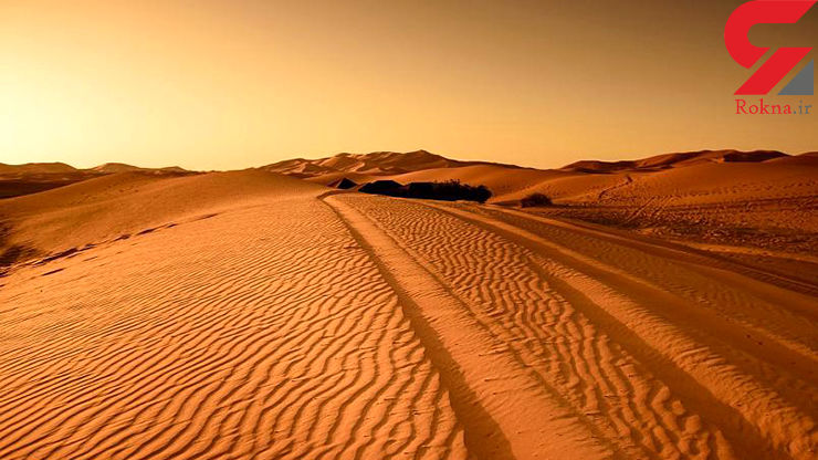دلیل پیدایش صحرای آفریقا/ آیا انسان در پیدایش این صحرای بزرگ دخیل بوده است؟!