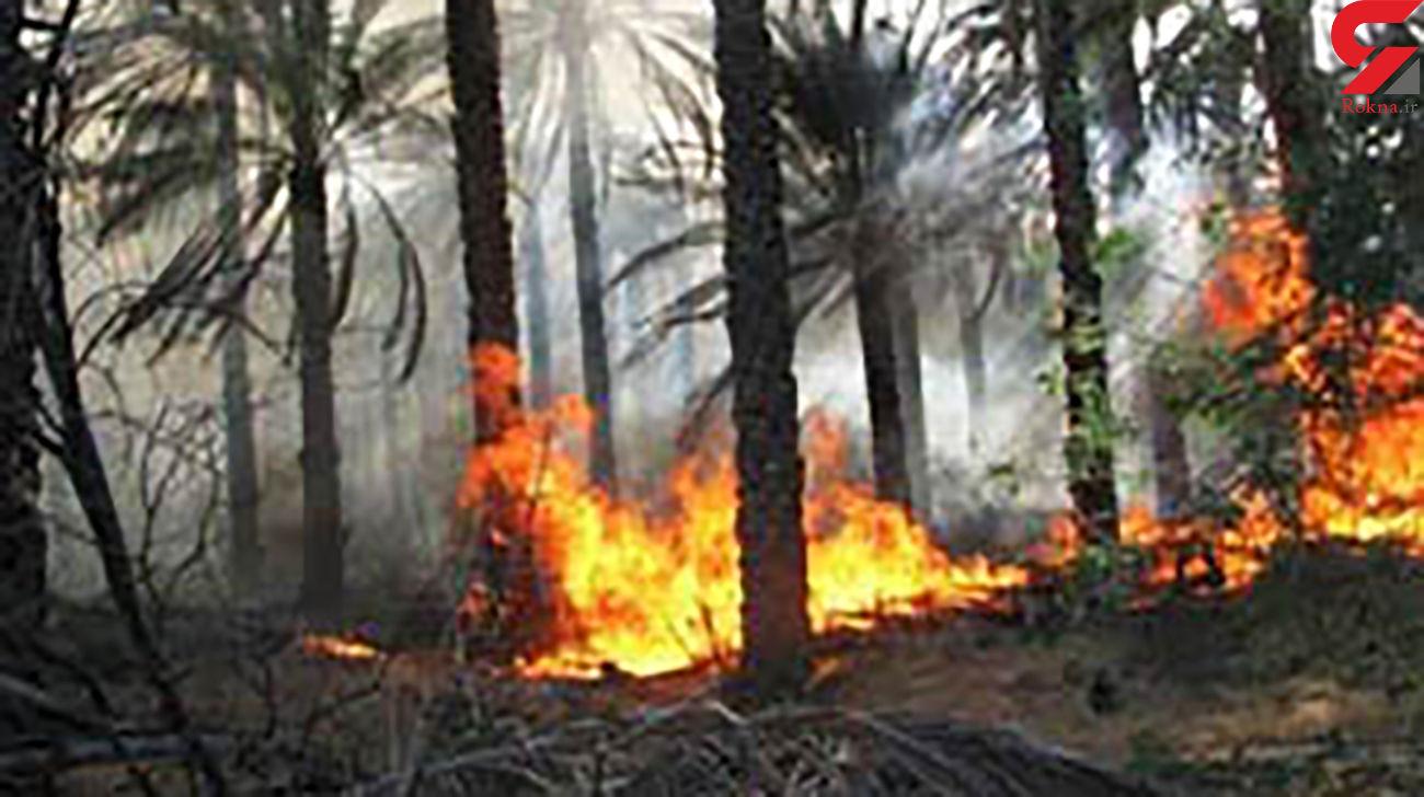 14 ساعت تلاش برای مهار آتش سوزی در دهستان سیاهو بندرعباس