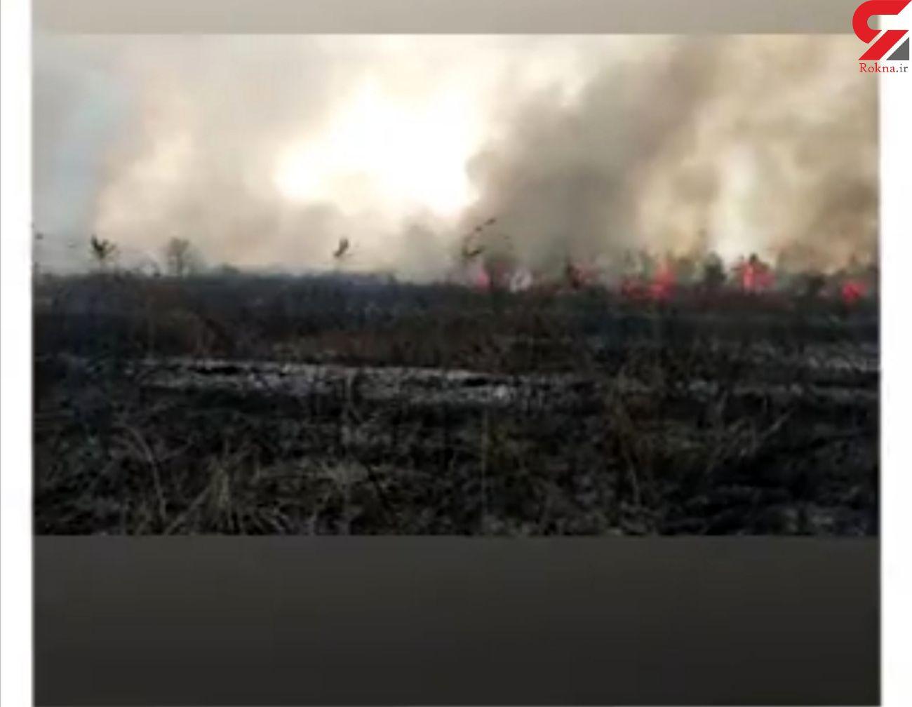 آتش سوزی بی سابقه  ۲۰ هکتاری علفزارها در رشت