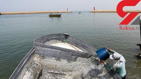 صید در آبهای جنوب به چینیها سپرده نشده فقط کشتیها چینی هستند !