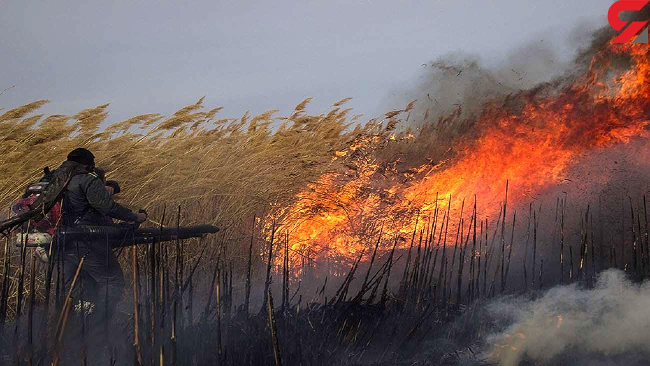مهار آتشسوزی در حریم میراث جهانی قلعه دختر فیروزآباد