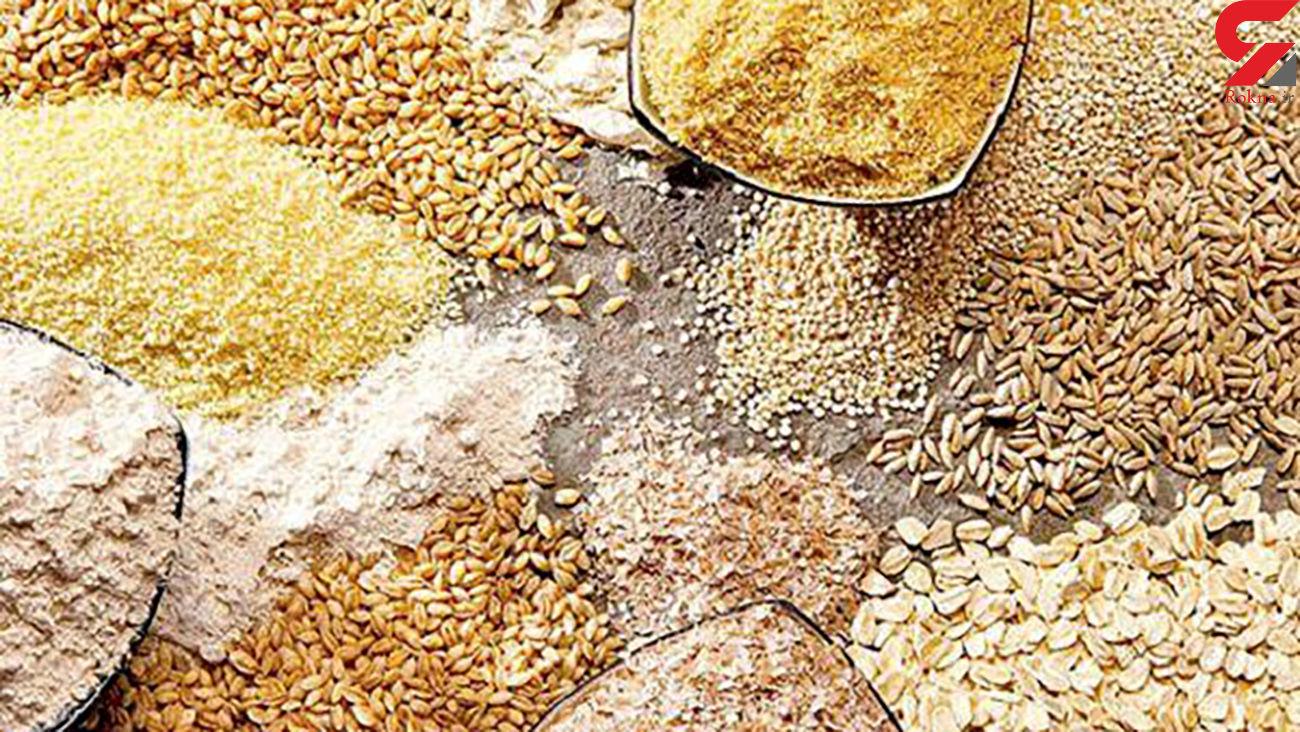 یارانه برخی محصولات بخش کشاورزی افزایش یافت