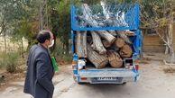 کشف 2 تن چوب قاچاق در قیروکارزین