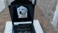 عجیب ترین سنگ قبر یک سگ در ایران+عکس