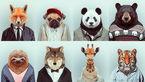 تصاویر حیوانات با لباس و پوشش های جالب