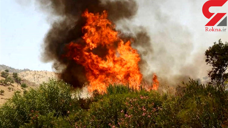 سه هکتار از مراتع جهرم در آتش سوخت