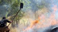 آتش سوزی های سریالی در منطقه گردشگری رود رونه باشت