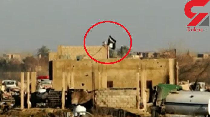 بیوه های داعشی به یکدیگر هم رحم نمی کنند /  کنیز مردان داعشی بودن افتخار است!+تصاویر