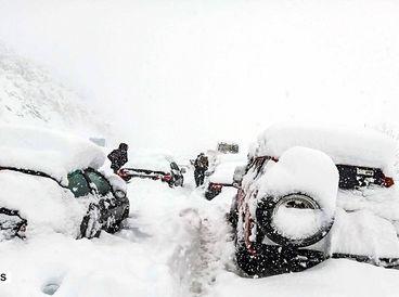 44 عکس از صحنه های باورنکردنی برف سنگین در گیلان / مردم درمانده شدند