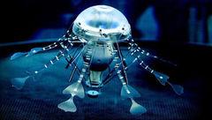 نسل جدید عروسهای دریایی با تواناییهای خاص!